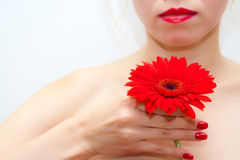 Girl with red flower. Beautiful young girl with a red flower Stock Photos