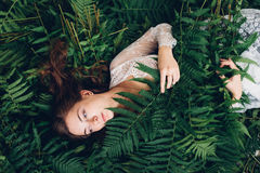 Girl with red hair in an armful of ferns. Women with red hair in an armful of ferns Royalty Free Stock Photos