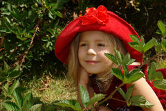 The girl in red hat. The girl in the red hat royalty free stock photography