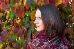 Girl and red leaves Royalty Free Stock Photo