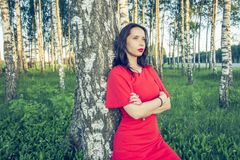 A girl with red lips in a red dress is standing in a birch grove vogue style royalty free stock photo
