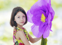 Girl in a red paper flower. Royalty Free Stock Image