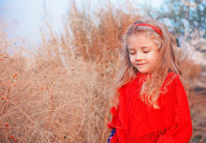 Girl in a red poncho Stock Photography