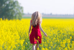 The girl in red is on the rape field. Stock Image