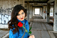 Girl with a red rose Stock Photography