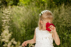 Girl with red rose. Adorable blond little girl with flower headband smelling red rose in green meadow Royalty Free Stock Image