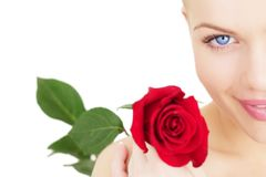 Girl with a red rose on white Stock Photography