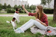 Girl in red tartan shirt plays with her dog. Young pretty girl in red tartan shirt and jeans sit at the lawn near high buildings and play with her dog. Active royalty free stock photography
