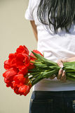 Girl with red tulips in hand Royalty Free Stock Image