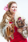 Girl  in red with two yorkshire terriers on white Stock Image