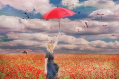 A girl with a red umbrella in a red poppy field and red petals of poppies whirling in the air. royalty free stock photos