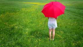 Girl with red umbrella. Walking in the field stock footage