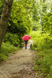 Girl with Red Umbrella Walking Through the Forest Stock Images