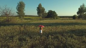 Girl with red umbrella walks at the field. The camera shoots from behind. Little girl wearing white dress walks with the polka dot red umbrella over the meadow stock footage
