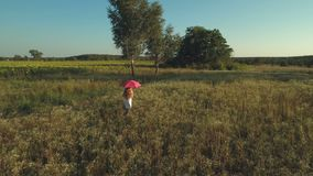 Girl with red umbrella walks in the meadow. The camera shoots from behind. Little girl wearing white dress walks with the polka dot red umbrella over the meadow stock video footage