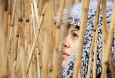Girl in reed. The girl a look through the reed Royalty Free Stock Photos