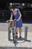 Girl rent city bike Royalty Free Stock Photos