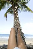 Girl resting legs on coconut tree tropical beach Royalty Free Stock Photos