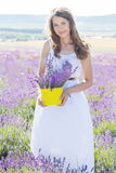 Girl is resting on the purple field of lavender. Pretty teen girl is holding yellow basket resting in a field of lavender flowers stock images