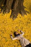 Girl resting under Ginkgo tree Stock Image