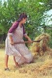 Girl in retro dress on nature Stock Photo