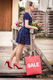 Girl in the retro dress stand on a wooden bridge, near a red bag Stock Photos