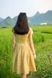 Girl in a rice field with karst scenery Stock Photography