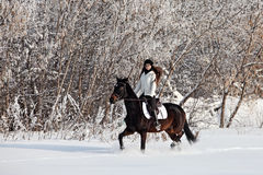 Girl ride her horse in winter woods Stock Image