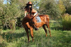 The girl rider. Walking his horse Royalty Free Stock Images