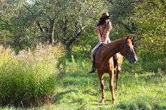 The girl rider. Walking his horse Stock Photos