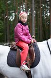 Girl rider on a white horse Stock Image
