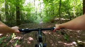Girl rides a bike along a path in a pine forest in the summer with sunlight stock video footage