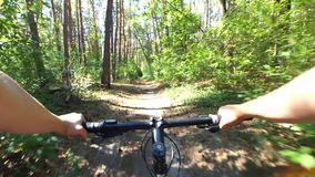 Girl rides a bike along a path in a pine forest in the summer with sunlight stock video