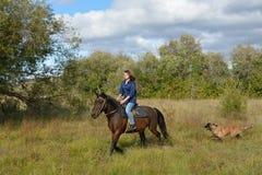 Girl rides, dog. Girl rides on horseback, summer, Siberia royalty free stock images