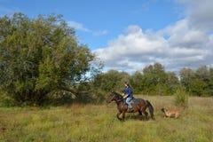 Girl rides, dog. Girl rides on horseback, summer, Siberia royalty free stock photos