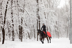 Girl rides horse in falling snow at dusk Royalty Free Stock Photography