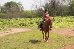 Girl rides on horse Stock Photos