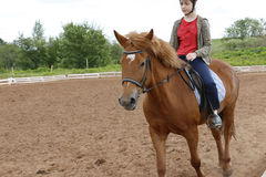 Girl rides on horse in a field Stock Photography