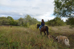 Girl rides on the meadow Royalty Free Stock Images