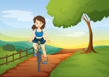A girl riding on a bicycle Royalty Free Stock Images