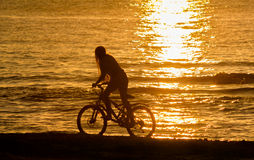 Girl riding bicycle by sea against sunset Stock Images