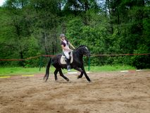 Girl riding on a black horse. Royalty Free Stock Photography