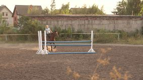 Girl riding a brown horse jumps over the barrier. stock footage
