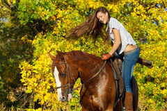 Girl riding a horse Stock Image