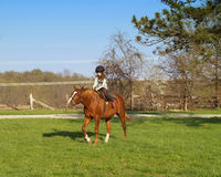 Girl riding horse. A little caucasian girl learning to ride a horse outdoors Stock Images