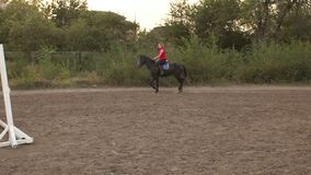 Professional girl rider galloping on a horse. stock footage