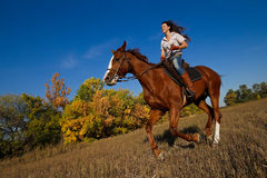 Girl riding a horse Royalty Free Stock Image