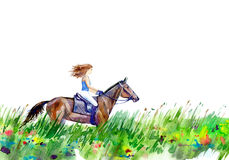 Girl riding a horse on the field. Summer landscape.Watercolor hand drawn illustration.White background Royalty Free Stock Photos