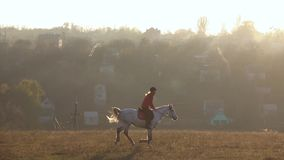 Girl riding a horse galloping across the field. Slow motion stock footage