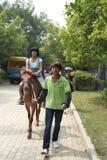 Girl riding a horse Stock Photos
